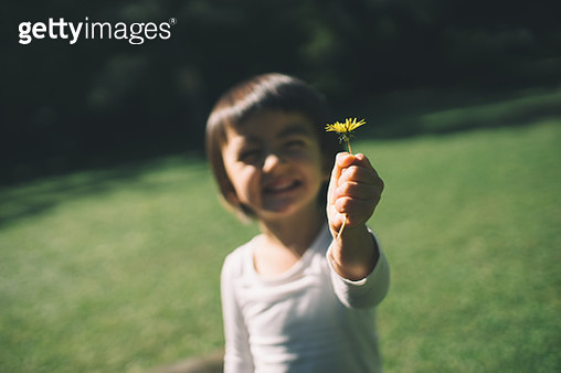 Adorable little girl showing a flower she picked - gettyimageskorea