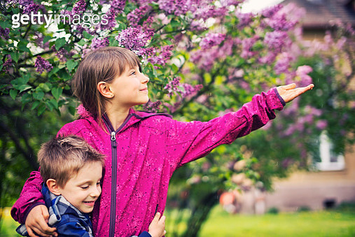 Brother and sister and spring rain - gettyimageskorea