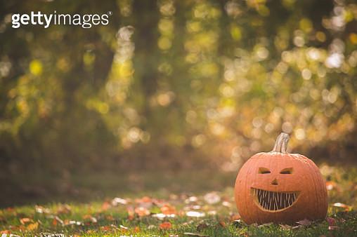 Jack-o-lantern in a garden - gettyimageskorea
