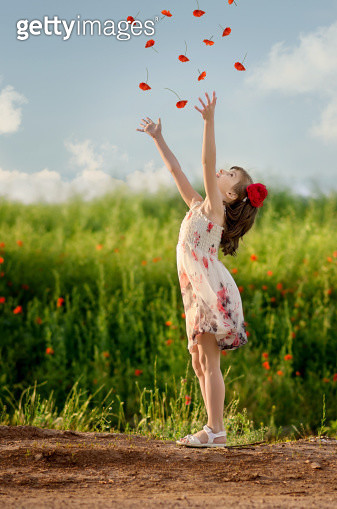 Little girl throwing poppies in the air - gettyimageskorea