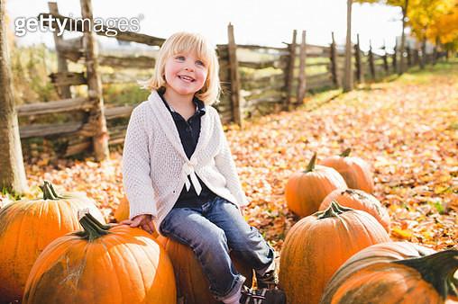 Female toddler sitting amongst pumpkin harvest - gettyimageskorea