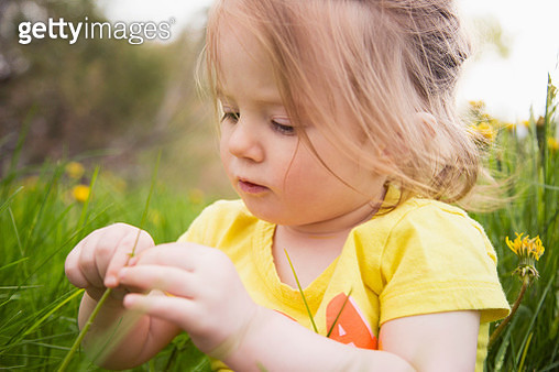 USA, Colorado, Portrait of girl (2-3) playing in grass - gettyimageskorea