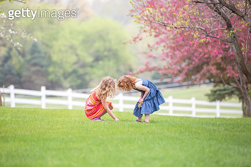 Girl Looking At Something in Grass in Springtime - gettyimageskorea