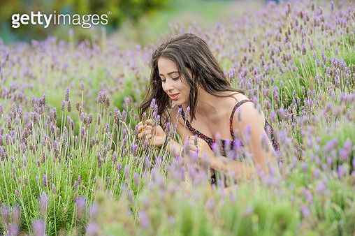 A young lady enjoy the lavender field before the storm - gettyimageskorea