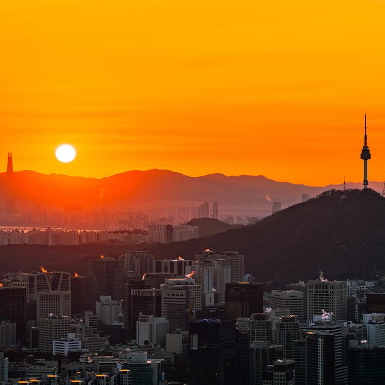 2020 새로운 서울