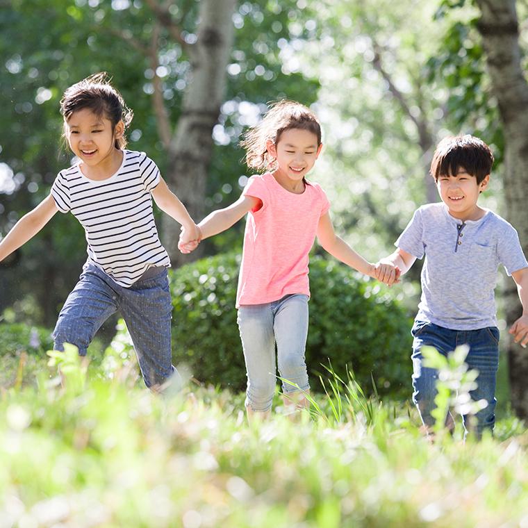 어린이 숲 체험