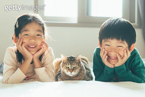 아이들과 고양이 - gettyimageskorea