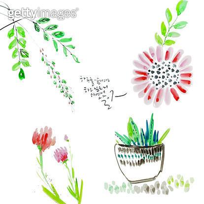 제목 : 하루를 살더라도<br/>작품설명 : 화초,풀꽃,수묵화,캘리그라피,해바라기,튤립,꽃,일러스트 - gettyimageskorea