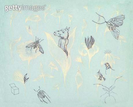 꽃과 말과 곤충 - gettyimageskorea