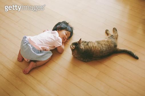 아기와 고양이 - gettyimageskorea