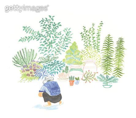 아빠가 가꾸는 정원 - gettyimageskorea