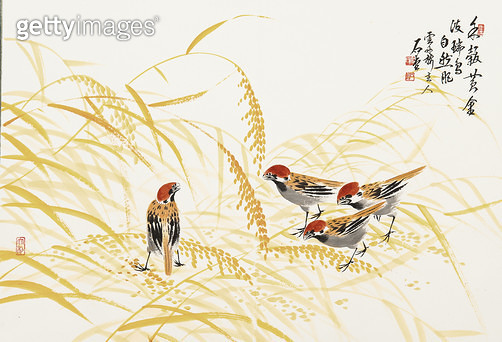 제목 : 참새와 조 (2005년)<br/>소재 : 한지 수묵담채<br/>작품사이즈 : 70x50(㎝)<br/>작품 설명 : 원로작가 한국화 문인화 참새  가을 새 좁쌀 - gettyimageskorea