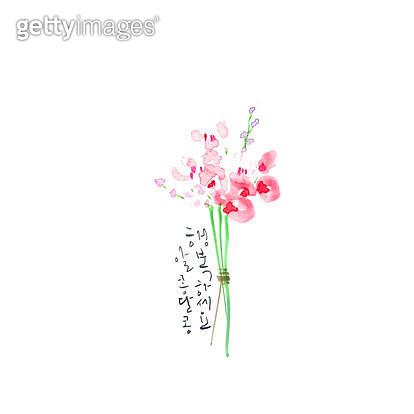 제목 : 알콩달콩<br/>작품설명 : 축하,꽃다발,꽃,기념일,결혼,생일,어버이날,캘리그라피,수묵화,일러스트 - gettyimageskorea