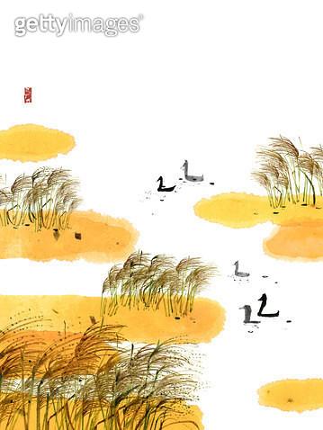 제목 : 갈대숲 (2014년)<br/>소재 : 물감, 먹, 화선지<br/>작품사이즈 : 21cmx28cm(㎝)<br/>작품 설명 : 갈대,노랑,노을,가을,풍요,추수 - gettyimageskorea