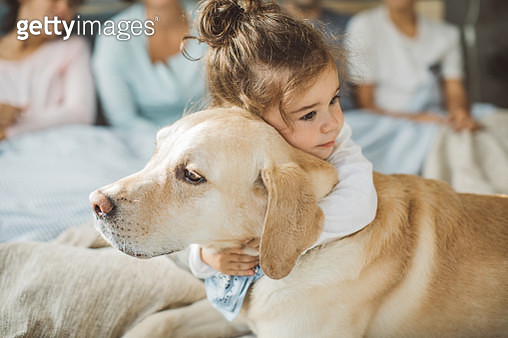 Little boy hugging his dog friend on bed in the morning - gettyimageskorea