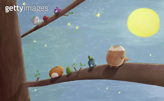 제목 : 달밤 (2011년)<br/>소재 : 디지털 일러스트<br/>작품사이즈 : 38cm x 23cm(㎝)<br/>작품 설명 : 달,빛 ,부엉이,나무,밤,별 - gettyimageskorea