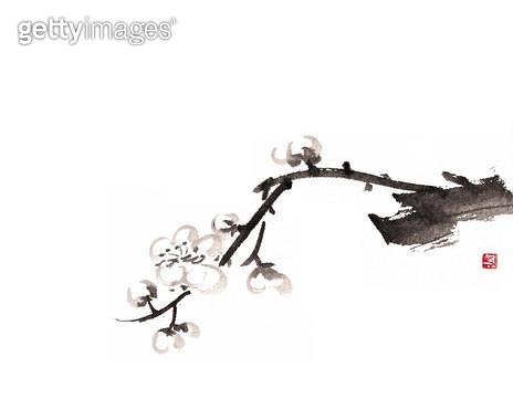 제목 : 매화 (2012년)<br/>소재 : 한지 먹 채색<br/>작품사이즈 : 32 x 24(㎝)<br/>작품 설명 : 문인화 매화 봄 - gettyimageskorea