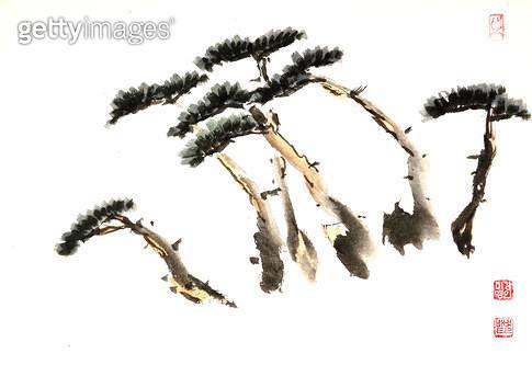 제목 : 소나무 (2006년)<br/>소재 : 한지 수묵 채색<br/>작품사이즈 : 35x24(㎝)<br/>작품 설명 : 초대작가 순수미술 그림 미술작품 미술이미지 한국화 수채화 문인화 소나무 나무 - gettyimageskorea