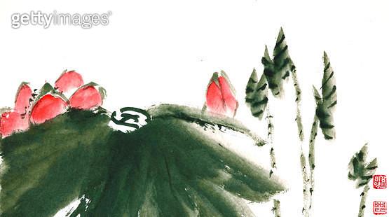 제목 : 연꽃 (2016년)<br/>소재 : 한지 수묵 채색<br/>작품사이즈 : 35x22(㎝)<br/>작품 설명 : 초대작가 순수미술 그림 미술작품 미술이미지 한국화 수채화 문인화 연꽃 여름  - gettyimageskorea