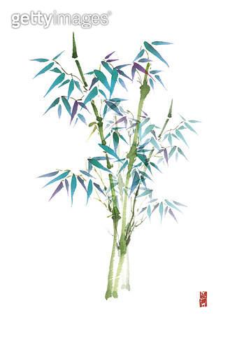 제목 : 대나무 (2011년)<br/>소재 : 물감, 먹, 화선지<br/>작품사이즈 : 25cmx36cm(㎝)<br/>작품 설명 : 대나무,컬러,먹그림 - gettyimageskorea