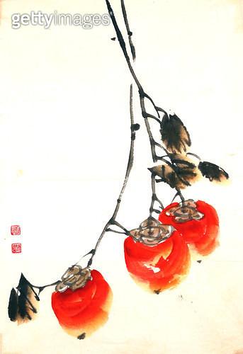 제목 : 감나무 (2005년)<br/>소재 : 한지 수묵 채색<br/>작품사이즈 : 33x49(㎝)<br/>작품 설명 : 초대작가 순수미술 그림 미술작품 미술이미지 한국화 수채화 문인화 감나무 과일 가을 - gettyimageskorea