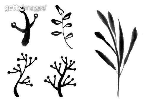 나뭇잎 수묵화 무늬 - gettyimageskorea
