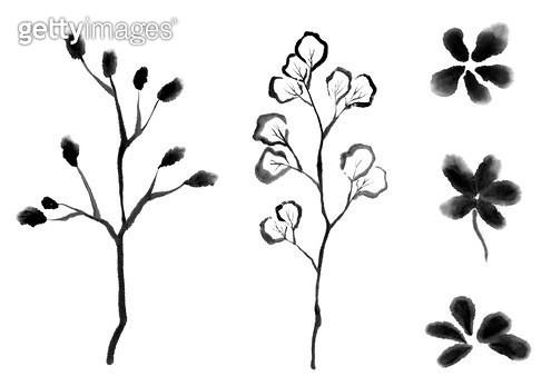 나뭇잎, 잎사귀 수묵화 무늬 - gettyimageskorea