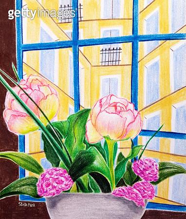 창가의 꽃 - gettyimageskorea