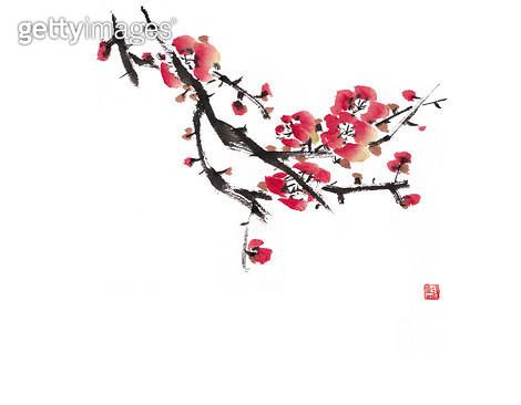 제목 : 매화 (2012년)<br/>소재 : 한지 먹 채색<br/>작품사이즈 : 32 x 24(㎝)<br/>작품 설명 : 문인화 매화 꽃 - gettyimageskorea