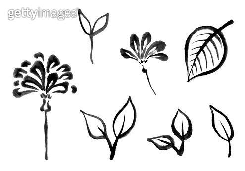 꽃, 잎사귀 수묵화 무늬 - gettyimageskorea