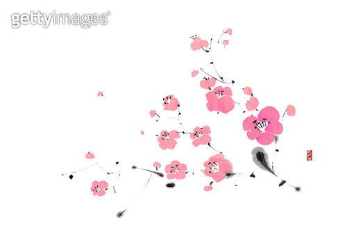 제목 : 벚꽃가지 (2014년)<br/>소재 : 물감, 먹, 화선지<br/>작품사이즈 : 43cmx30cm(㎝)<br/>작품 설명 : 꽃,핑크,나비 - gettyimageskorea