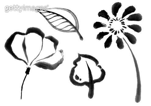 꽃, 나뭇잎 수묵화무늬 - gettyimageskorea
