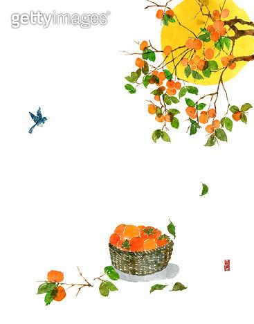 제목 : 감나무와 바구니 (2014년)<br/>소재 : 물감, 먹, 화선지<br/>작품사이즈 : 43cmx30cm(㎝)<br/>작품 설명 : 감나무,과일,추석,풍요,추수,새,가을 - gettyimageskorea