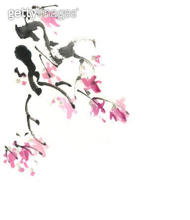 꽃나무 - gettyimageskorea