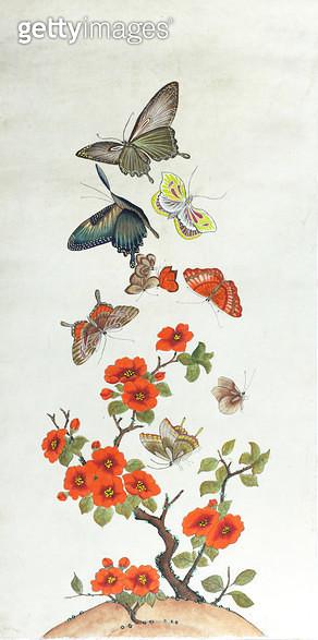 제목 : 화접도3폭 (2009년)<br/>소재 : 한지 채색<br/>작품사이즈 : 32 x 65(㎝)<br/>작품 설명 : 나비 주황 꽃 - gettyimageskorea