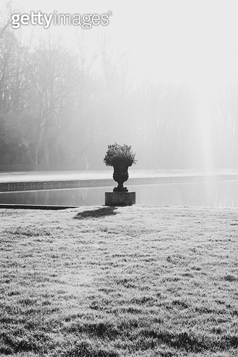 프랑스,자연,풍경,공원,호수,화분,햇살 - gettyimageskorea