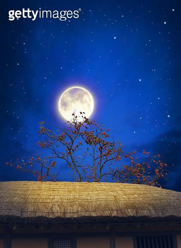 달밤 - gettyimageskorea