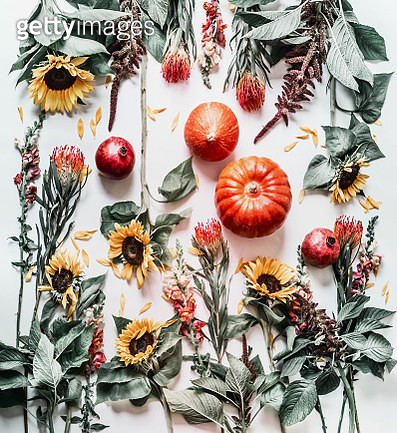 Autumn flat lay with pumpkins, garden flowers and sunflowers on white desktop background, top view. Fall composing - gettyimageskorea