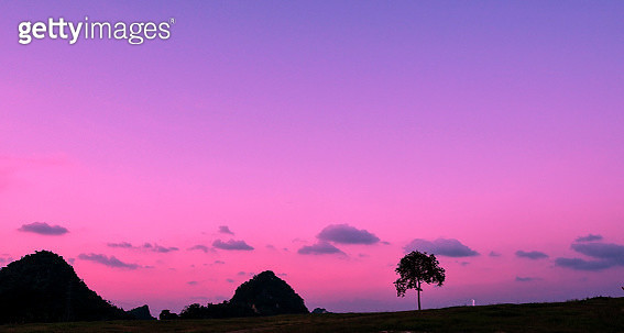 Silhouette Trees On Field Against Sky At Sunset - gettyimageskorea