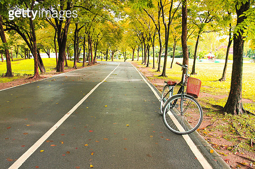 The bicycle on path of park - gettyimageskorea