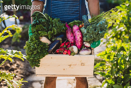 It's the freshest rewards from looking after nature - gettyimageskorea