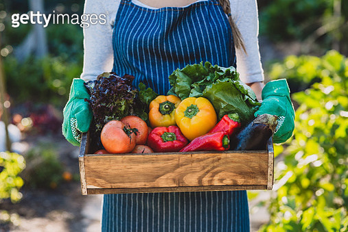 You won't find them fresher anywhere else - gettyimageskorea