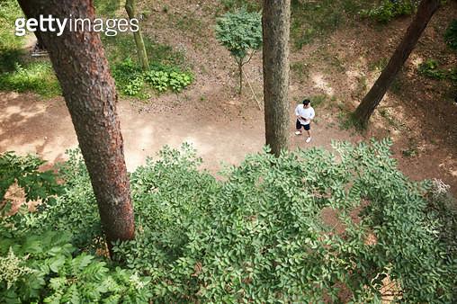 숲에서 산책하는 남자 - gettyimageskorea