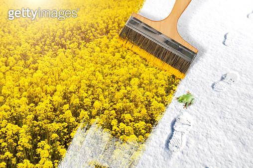 밝고 따뜻한 세상과 봄 - gettyimageskorea