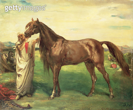 <b>Title</b> : Hadji, an Arabian Stallion, 1853 (oil on panel)<br><b>Medium</b> : oil on panel<br><b>Location</b> : Private Collection<br> - gettyimageskorea