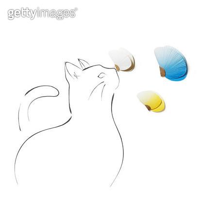 나비와 놀고있는 고양이 그림 - gettyimageskorea