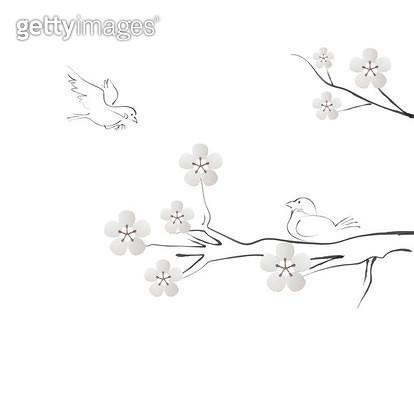 벚꽃나무에 있는 새들 - gettyimageskorea