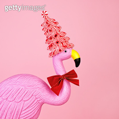 Pink flamingo wearing candy cane hat - gettyimageskorea