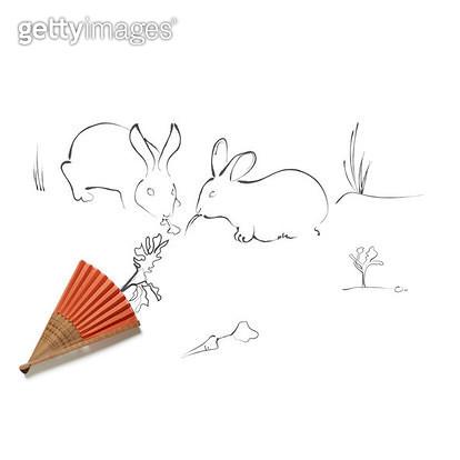 당근을 먹는 토끼들 - gettyimageskorea