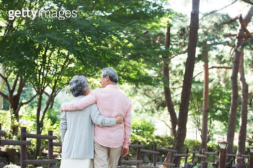 소나무 숲길을 걷는 노인 부부 - gettyimageskorea
